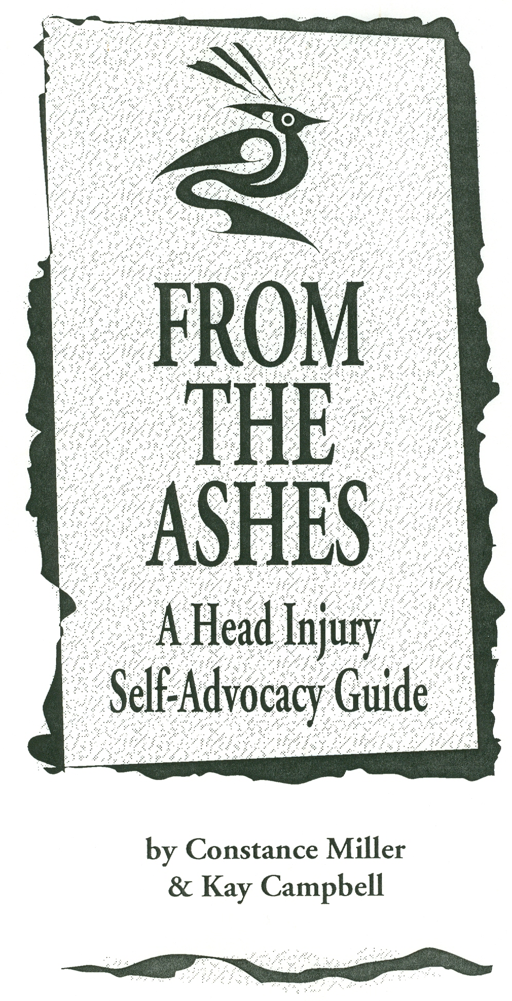 From The Ashes: Our Brain Injury Guide
